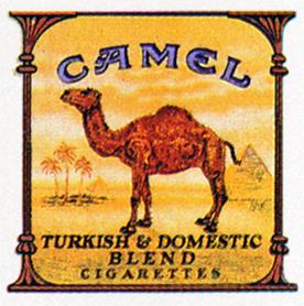 CamelFinal