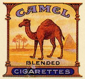 CamelPacks001